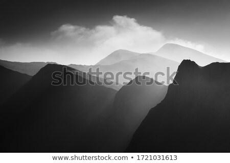 rano · krajobraz · przeciwmgielne · wzgórza · wcześnie · rano · zielone - zdjęcia stock © kotenko