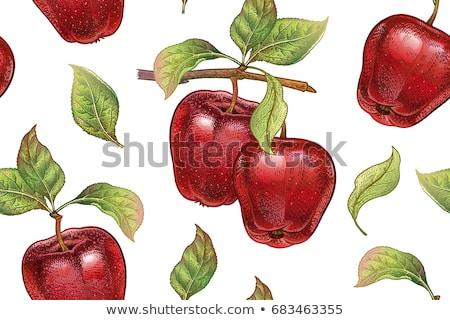 Сток-фото: яблоки · Vintage · стиль · оранжевый · ресторан