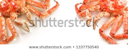Büyük kırmızı kral yengeç beyaz gıda Stok fotoğraf © nasonov