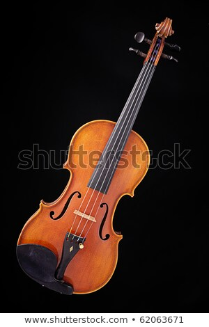 Complete Violin Viola Isolated Against A Black Back Ground Stock fotó © mkm3