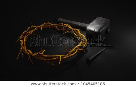 İncil taç siyah deri altın Stok fotoğraf © albund