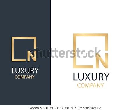 premiun letter N logo concept design in gold Stock photo © SArts