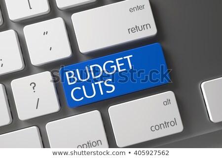 ノートパソコンのキーボード · ボタン · 言葉 · 予算 · 青 - ストックフォト © tashatuvango