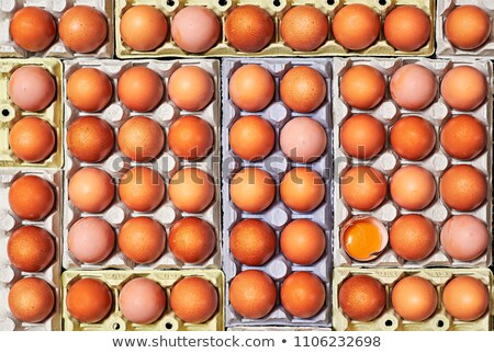 A lot of eggs and unique one cracked over a egg cartons. Stock photo © Photooiasson