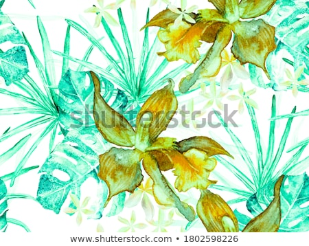 Tropical emerald pattern with orchid and bird Stock photo © PurpleBird