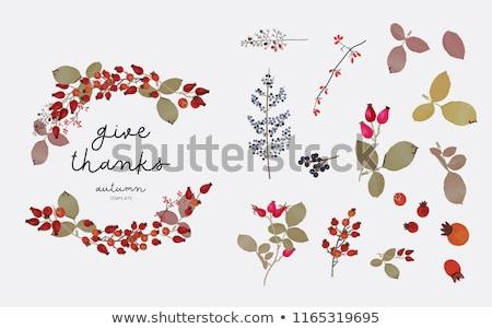 Temporada venda vetor projeto outono coroa Foto stock © TasiPas