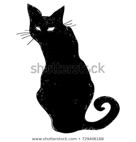 Rajz fekete macska boszorkány felirat illusztráció kalap Stock fotó © cthoman