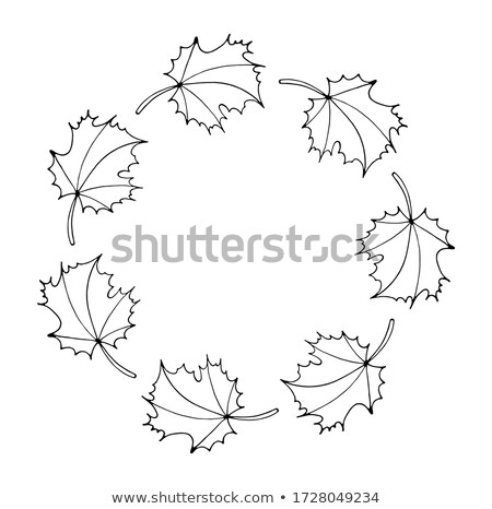 Floral Frame. Wreath with stylized leaves. Eco style Stock photo © ESSL