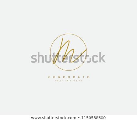 Kaligrafi mektup m logo siyah ikon vektör Stok fotoğraf © blaskorizov