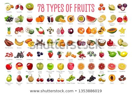 Pomelo and Lychee Mango Set Vector Illustration Stock photo © robuart