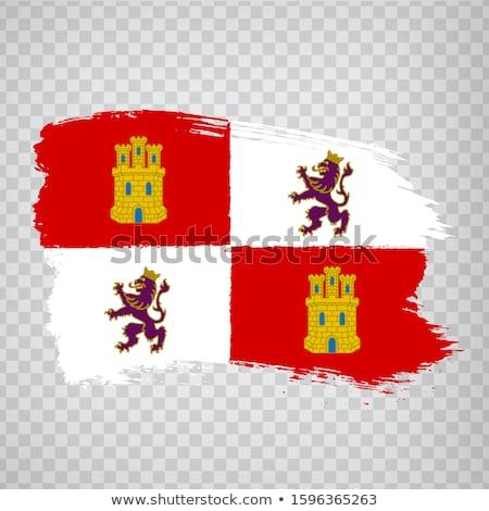 Castile and Leon flag  Stock photo © grafvision