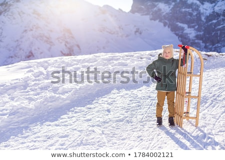 Wooden sledge Stock photo © montego
