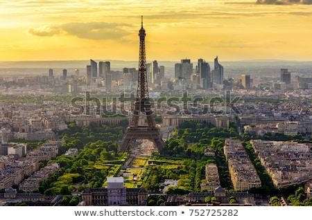 Eiffel turné Párizs városkép Eiffel-torony zöld fű Stock fotó © neirfy