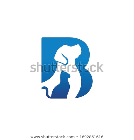 Abstract icons for letter B Stock photo © cidepix