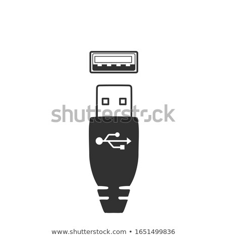 USB port and connector, male female connection. Stock Vector illustration isolated on white backgrou Stock photo © kyryloff