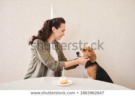 Woman adjusting hat on dog Stock photo © vkstudio