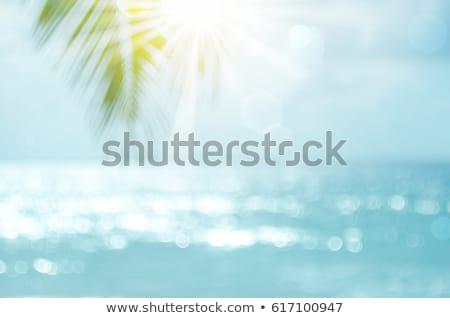 Summer tropical sea with waves, palm leaves and blue sky Stock photo © karandaev