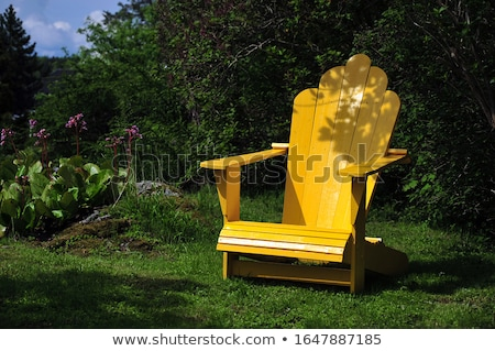 Adirondack chair in forest shade Stock photo © backyardproductions