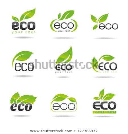 Soyut eco düğme yaprak doğa arka plan Stok fotoğraf © rioillustrator