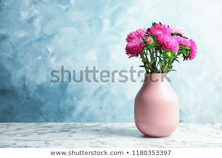 Fleur rose vase blanche nature maison table Photo stock © brebca
