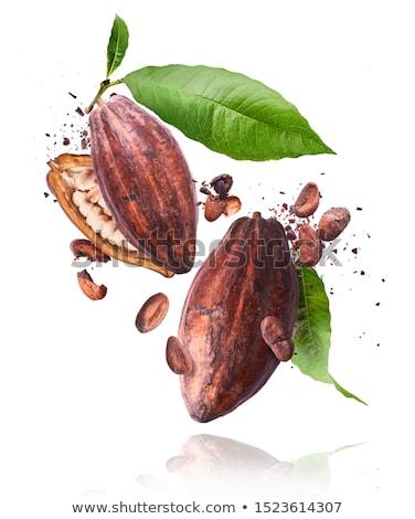 Open peul gebarsten vruchten vergadering tabel Stockfoto © ca2hill