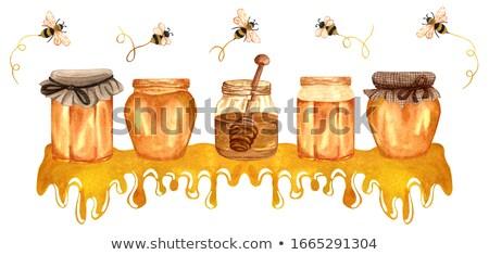 Raccolta miele a nido d'ape alimentare natura lavoro Foto d'archivio © Masha
