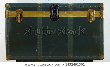 Storage trunk Stock photo © trgowanlock