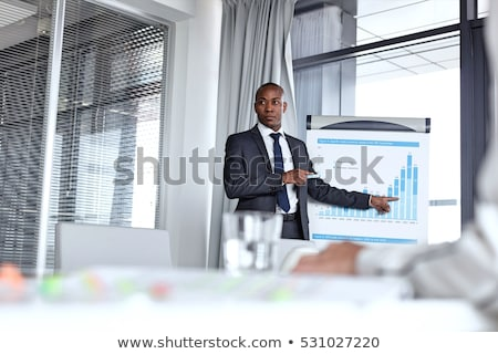 business man giving presentation stock photo © feedough