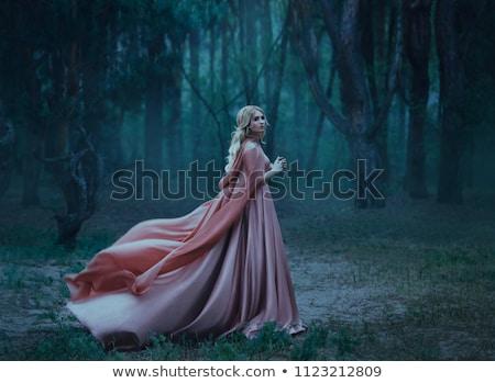 bella · vestito · rosso · lungo · capelli · biondi · grigio - foto d'archivio © dolgachov