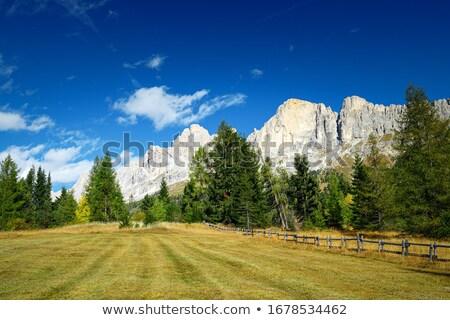 Roda di Vael - Italian Dolomites Stock photo © Antonio-S
