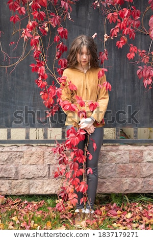 肖像 美しい 豊富な 女性 ブドウ 女性 ストックフォト © Massonforstock