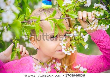 若い女の子 · リンゴ · ポーズ · フル · 食品 · 太陽 - ストックフォト © andersonrise