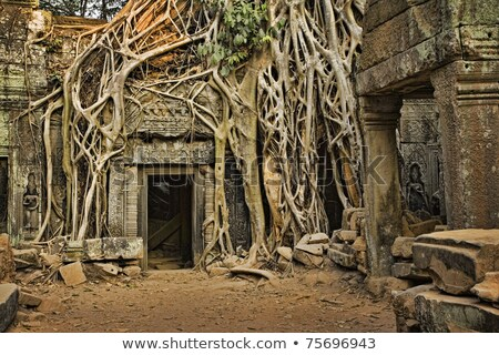 ruines · shot · mooie · turkoois · caribbean · zee - stockfoto © vwalakte