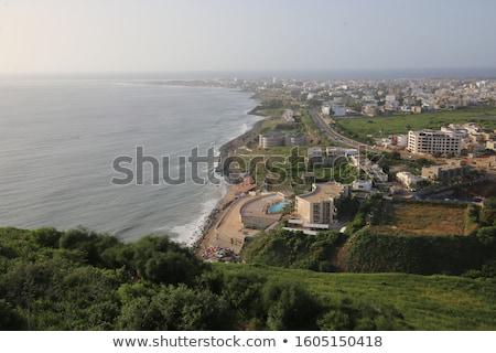 Green Atlantic waters on Senegal Africa coast  stock photo © lunamarina