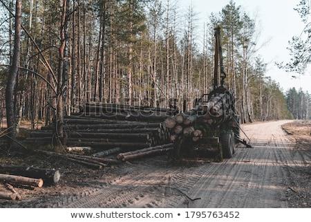 Nagy fa köteg ipari méret tűz Stock fotó © creisinger