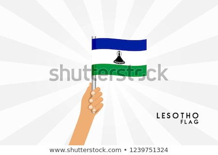 Lesotho Small Flag on a Map Background. Stock photo © tashatuvango