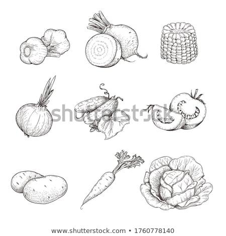 ストックフォト: Cabbage And Salad At A Market