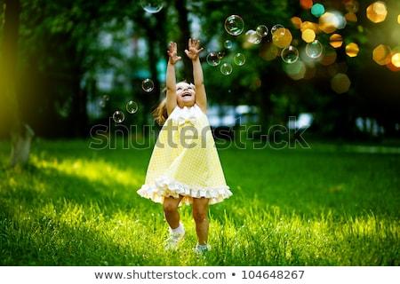 Buborékfújás szél gyönyörű barna hajú lány fúj Stock fotó © lithian