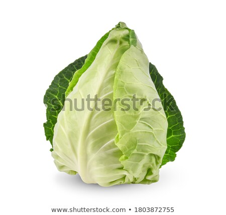 Head of cabbage Stock photo © simply