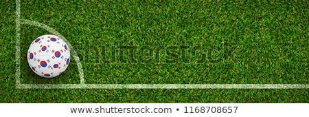 サッカー 韓国 色 草 サッカー 緑 ストックフォト © wavebreak_media