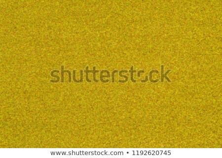 herbe · artificielle · image · texture · football · construction - photo stock © zerbor