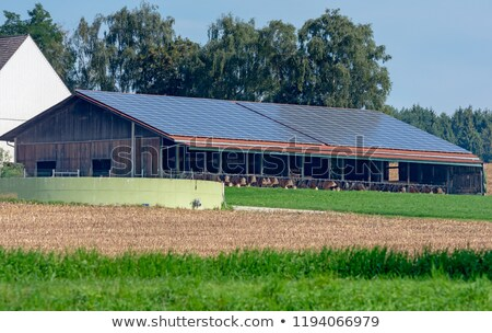 Cowshed with solar cells on the roof Stock photo © manfredxy