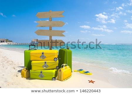 Карибы · лет · праздников · пляж · знак · символ - Сток-фото © vector1st