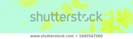 Pasen verkoop illustratie kleur lentebloem Stockfoto © articular