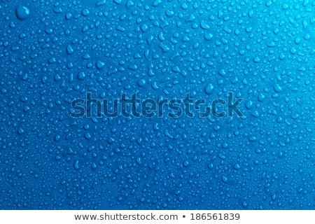 water droplets on blue background Stock photo © SArts