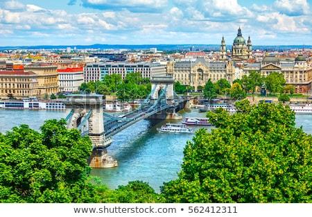 Будапешт Венгрия Cityscape изображение цепь моста Сток-фото © rudi1976