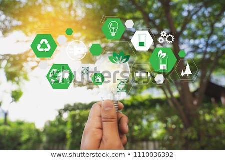 green solution stock photo © lightsource