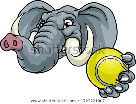 Elephant Tennis Ball Sports Animal Mascot Stock photo © Krisdog