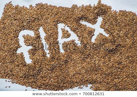 flax word made from flax seeds on white artist canvas Stock photo © galitskaya