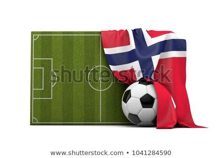 Noors voetbal gras vlag hemel Stockfoto © Saphira